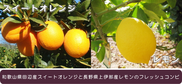 fruitsroots <フルーツルーツ> リフレッシュ スイートオレンジ&レモン
