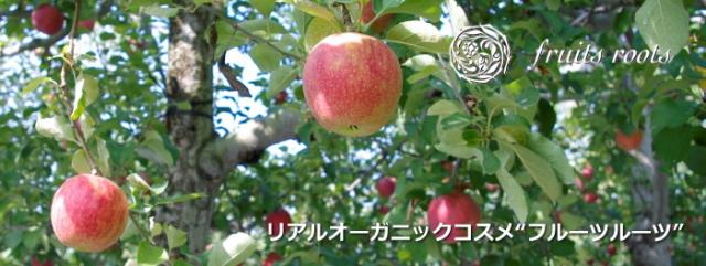 """リアルオーガニック基礎化粧品 """"Fruits roots フルーツルーツ""""通販"""