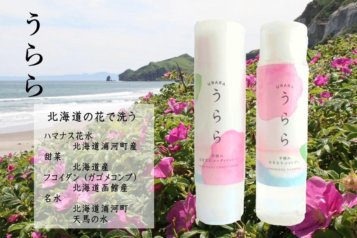 北海道の花で洗う 手摘み はまなすシャンプー 「うらら」